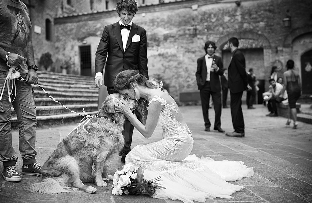 Tuscany wedding photographers- Dog
