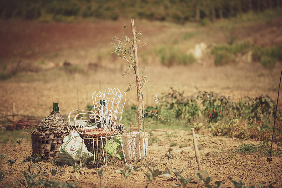 Wedding in Monte Follonico, Siena (Italy) countryside. Objects in countryside. Andrea Corsi wedding photographer, Tuscany.